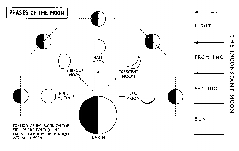 moon phases. Look for the moon in the sky.